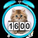 Kitten Clock Weather Widget icon