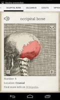 Screenshot of Bones
