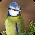 Gartenvögel logo