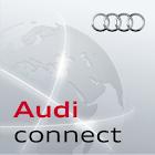 Audi MMI connect icon