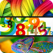 Colors Numbers Animals for Kid