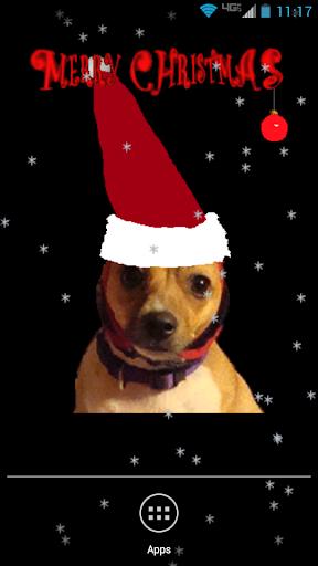 Santa Dog Live Wallpaper