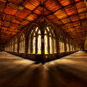 The Cloisters by Ian Taylor - Buildings & Architecture Public & Historical ( history, durham, england, location, movie, harry potter, cathedral, architecture, northeast, classic, historic, cloisters )
