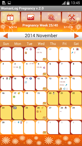 WomanLog Pregnancy Calendar