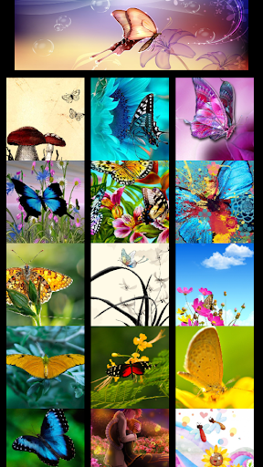 BUTTERFLY id on the App Store - iTunes - Apple