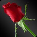 Flower Astro icon