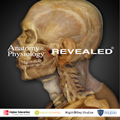 Anatomy & Physiology REVEALED