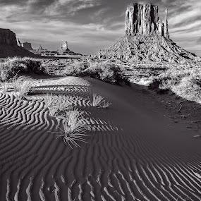 Monument Valley Number 3 by Flavio Mini - Black & White Landscapes ( monument valley, utah, black and white, landscape, dessert,  )