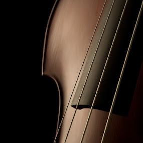 Violin Close-up by Brad Chapman - Artistic Objects Musical Instruments ( music, lighting, violin, musical, close up, object, instrument,  )