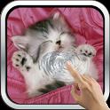 Sleeping Kitty 3D Wallpaper icon