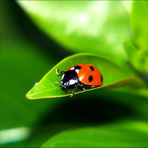 Ladybug Live Wallpaper - screenshot