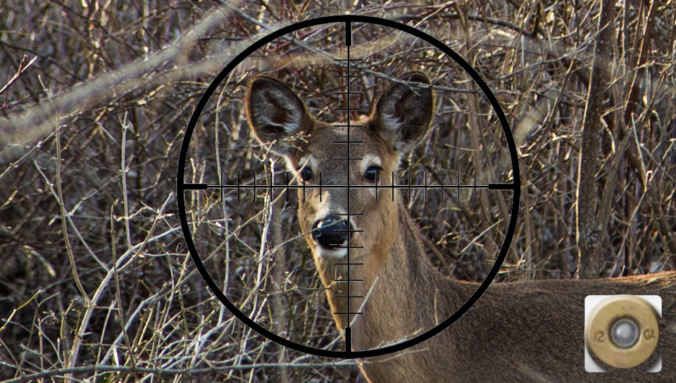 Deer Hunting App - screenshot