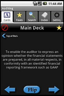Accounting: Auditing - screenshot thumbnail