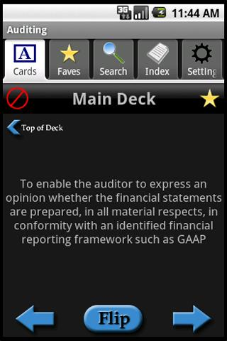 Accounting: Auditing - screenshot