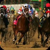 Horse Racing Ringtone
