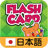 Dr Kids Flash Cards - Japan