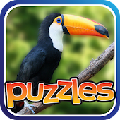 Bird Puzzles - Amazing Birds