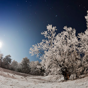 Moonrise by Ionut Stoica - Landscapes Starscapes ( fisheye, sky, winter, stars, romania, night, moonrise )