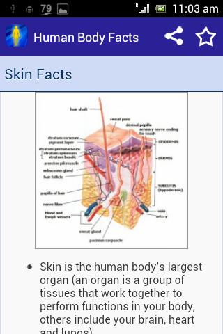 人体の事実|玩書籍App免費|玩APPs