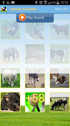 免費下載教育APP 動物和聲音 app開箱文 APP開箱王
