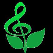 Raga Music Therapy