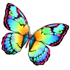 Paint Me a Butterfly! icon