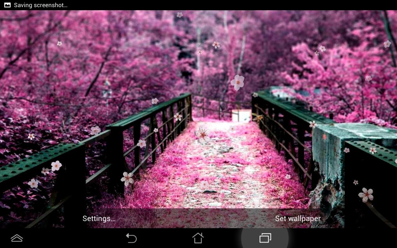 Fleur de cerisier fond d 39 cran applications android sur for Fond ecran photo live