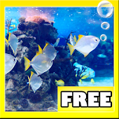 AQUARIUM HD LIVE WALLPAPER
