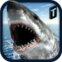 Crazy Shark 3D Sim icon