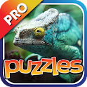 Lizards & Reptiles Puzzles Pro icon