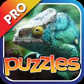 Lizards & Reptiles Puzzles Pro