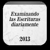 Texto Diario 2013
