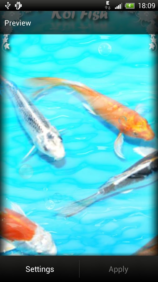 Koi Fish Live Wallpaper Free - screenshot