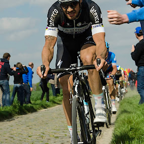 Come on! by Gerd Moors - Sports & Fitness Cycling ( cyclist, encourage, tom boonen, roubaix, cycling, sport, fan, cobblestone, shout, bicycle )
