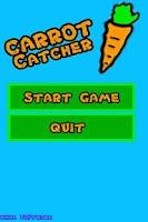 Screenshot of Carrot Catcher