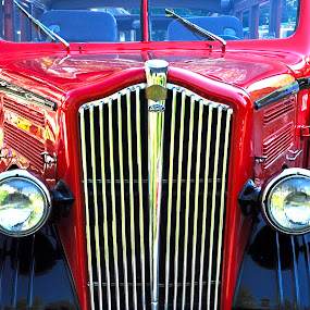 The Red Bus by Dorothy Valine Gram - Transportation Automobiles (  )