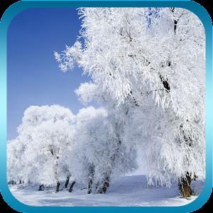 冬季降雪動態桌布 休閒 App Store-癮科技App