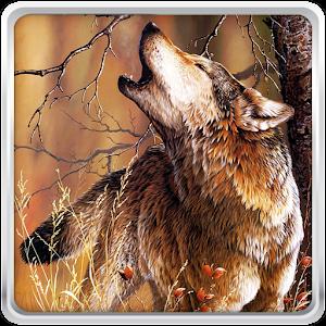 Λύκος Εικονες Για Φοντο APK
