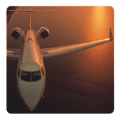 Flight Simulator 3D 2014