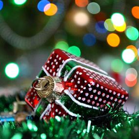 by Kristina Nutautiene - Public Holidays Christmas
