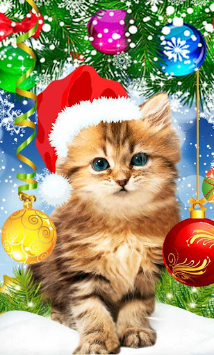 Kitty Christmas live wallpaper