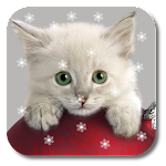 Xmas Cat Live Wallpaper