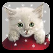 Xmas Cat Live Wallpaper