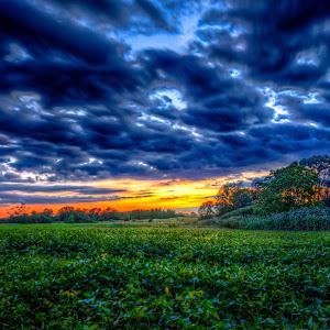 Bohemian Sunset.jpg