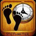 Stepometer - Pedometer App icon