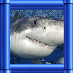 Flappy Shark for PC and MAC