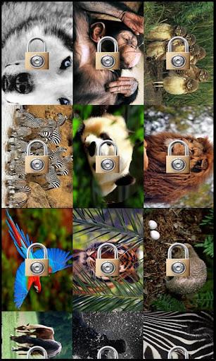 Animals Puzzle Jupe