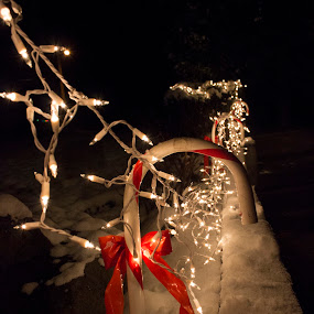 Candy Cane Lights by Tina Marie - Public Holidays Christmas