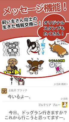 dogg.me camera(ドッグミーカメラ)犬専用カメラのおすすめ画像3