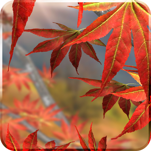 Autumn Tree Live Wallpaper 個人化 App LOGO-APP試玩